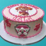 Paw Patrol Skye Birthday Cake